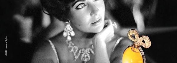 伊丽莎白·雅顿化妆品广告设计图